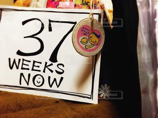 妊娠37週 - No.846303
