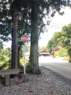バス停の写真・画像素材[843831]