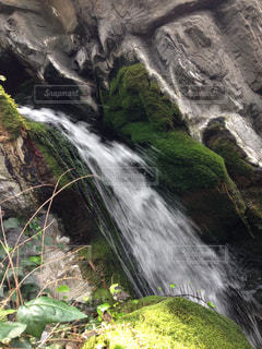 滝の写真・画像素材[846573]