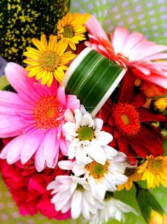 花束の写真・画像素材[849626]