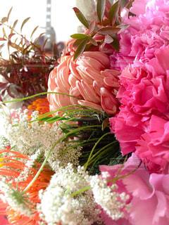 花束の写真・画像素材[852593]