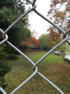 公園で撮影。フェンス越し。の写真・画像素材[853813]