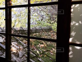 ガラス窓の写真・画像素材[902296]