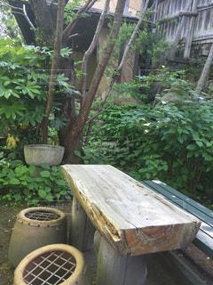 雰囲気のある木のベンチの写真・画像素材[1424031]
