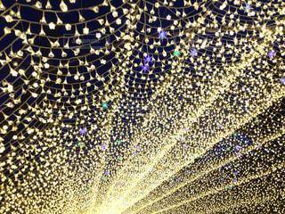 光のトンネルの写真・画像素材[870290]
