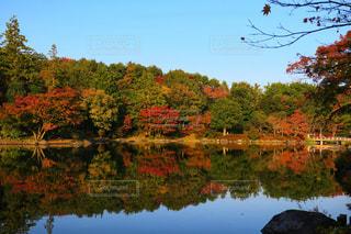湖畔に映る紅葉の写真・画像素材[863948]
