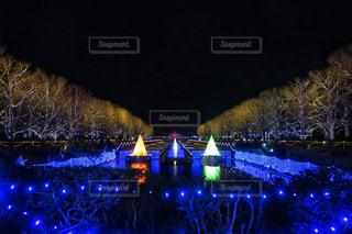 昭和記念公園のXmasの写真・画像素材[938195]