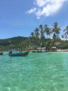 タイ!ピピ島!の写真・画像素材[837794]