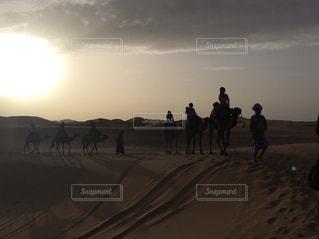 砂漠の朝の写真・画像素材[852053]