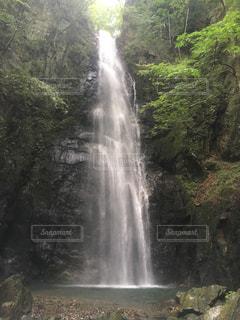 自然の写真・画像素材[837963]