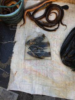 マレーシア コタキナバル 市場 魚の写真・画像素材[838555]