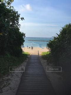 石垣島のビーチ - No.838459