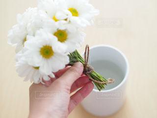 お花の飾り方の写真・画像素材[849084]