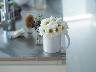 お花のあるキッチンの写真・画像素材[849096]