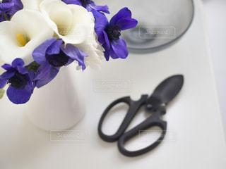 お花と花ばさみの写真・画像素材[849134]