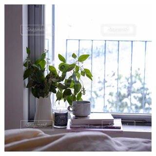 日当たりの良い窓に花の花瓶が飾ってある写真の写真・画像素材[980320]