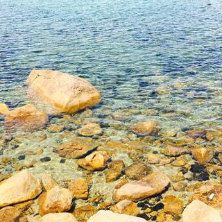 穏やかな海の写真・画像素材[907548]