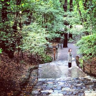 伊勢神宮の石段の写真・画像素材[839536]