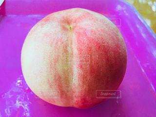採れたて桃の写真・画像素材[1526541]
