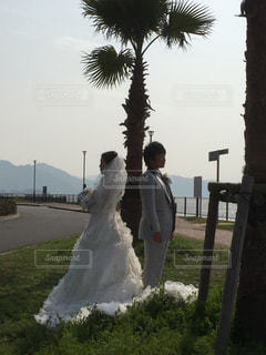 花嫁と新郎の写真・画像素材[843166]