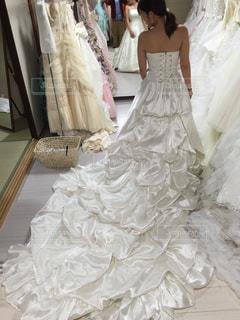 ウェディング ドレスの人の写真・画像素材[1436387]