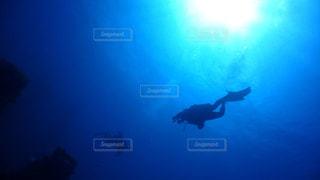 ダイビングの写真・画像素材[840153]