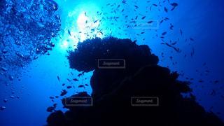海中の写真・画像素材[840158]