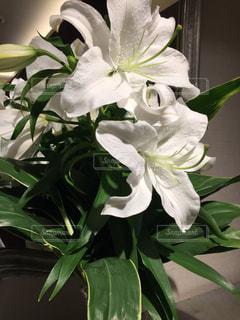 テーブルの上に花瓶の花の花束の写真・画像素材[854786]