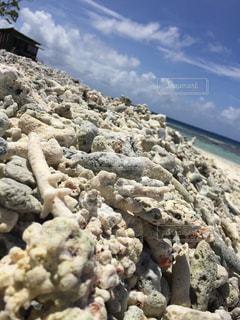 珊瑚の浜辺の写真・画像素材[1633322]