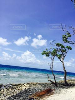 海辺の写真・画像素材[1633325]