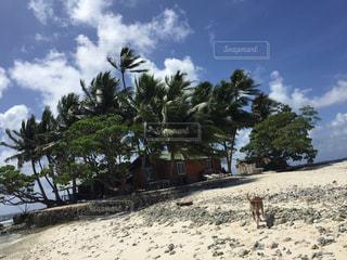 ジープ島の写真・画像素材[1633326]