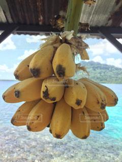 海とバナナの写真・画像素材[1633339]