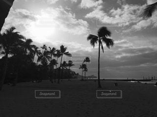 人の少ないビーチの写真・画像素材[840741]
