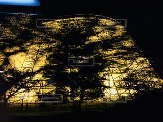 夜のジェットコースターの写真・画像素材[843727]