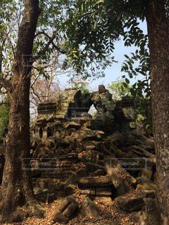 ベンメリア遺跡の写真・画像素材[841335]
