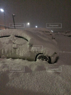 京都の大雪の写真・画像素材[841374]