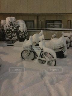 京都の大雪の写真・画像素材[841376]