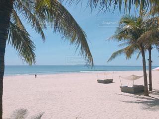ダナンのプライベートビーチの写真・画像素材[841639]