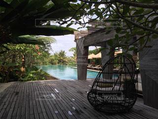 水の体の横に座っている木製のベンチの写真・画像素材[844679]