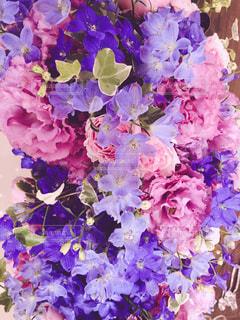 花の写真・画像素材[1218966]