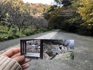 記念の写真・画像素材[2124941]