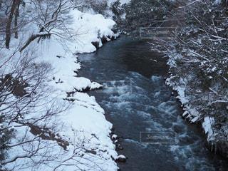 あやとり橋からの景色の写真・画像素材[987042]