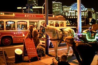 馬の前に立っている人々 のグループ - No.911353