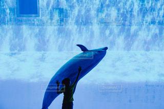 水の体の横に立っている人の写真・画像素材[843676]