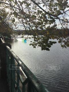 ブルタバ川の写真・画像素材[844124]