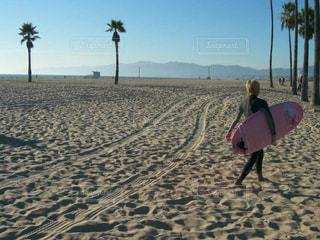 ロサンゼルスベニスビーチ (Venice Beach,LA)の写真・画像素材[845460]