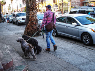 アボットキニー通り (Abbot Kinney Blvd) ロサンゼルスの写真・画像素材[922426]