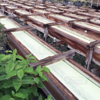 草津の湯畑の写真・画像素材[844712]