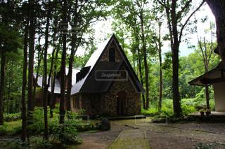 森の中の家の写真・画像素材[845093]