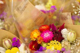 近くの花のアップの写真・画像素材[845098]